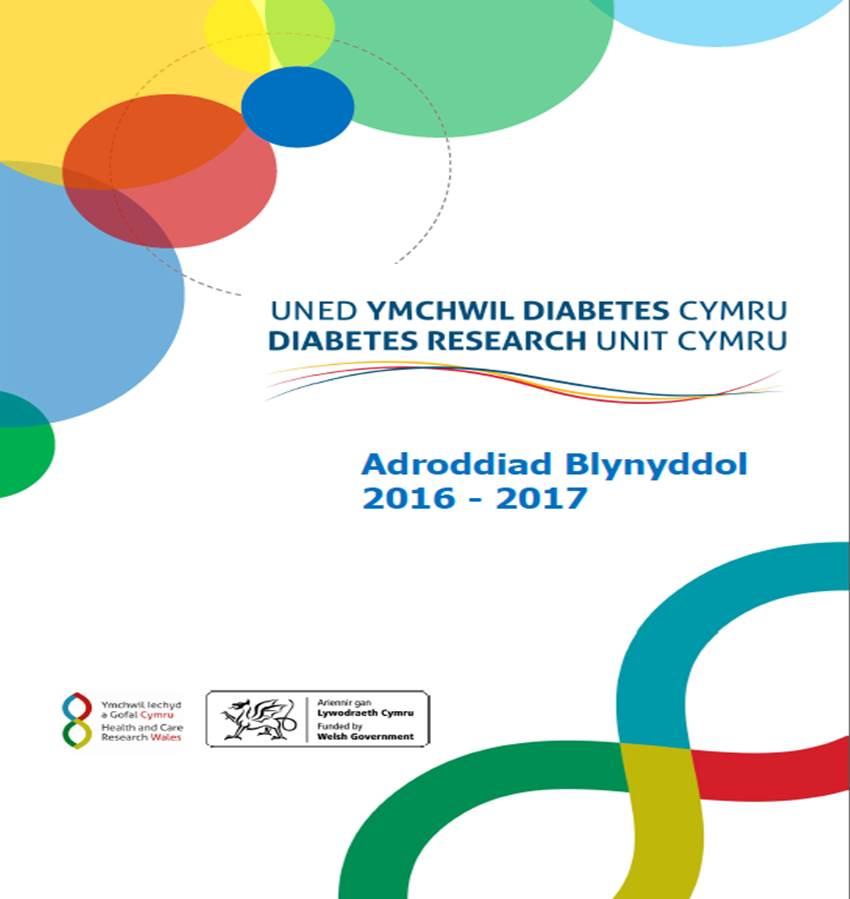 Annual Report Welsh2.jpg